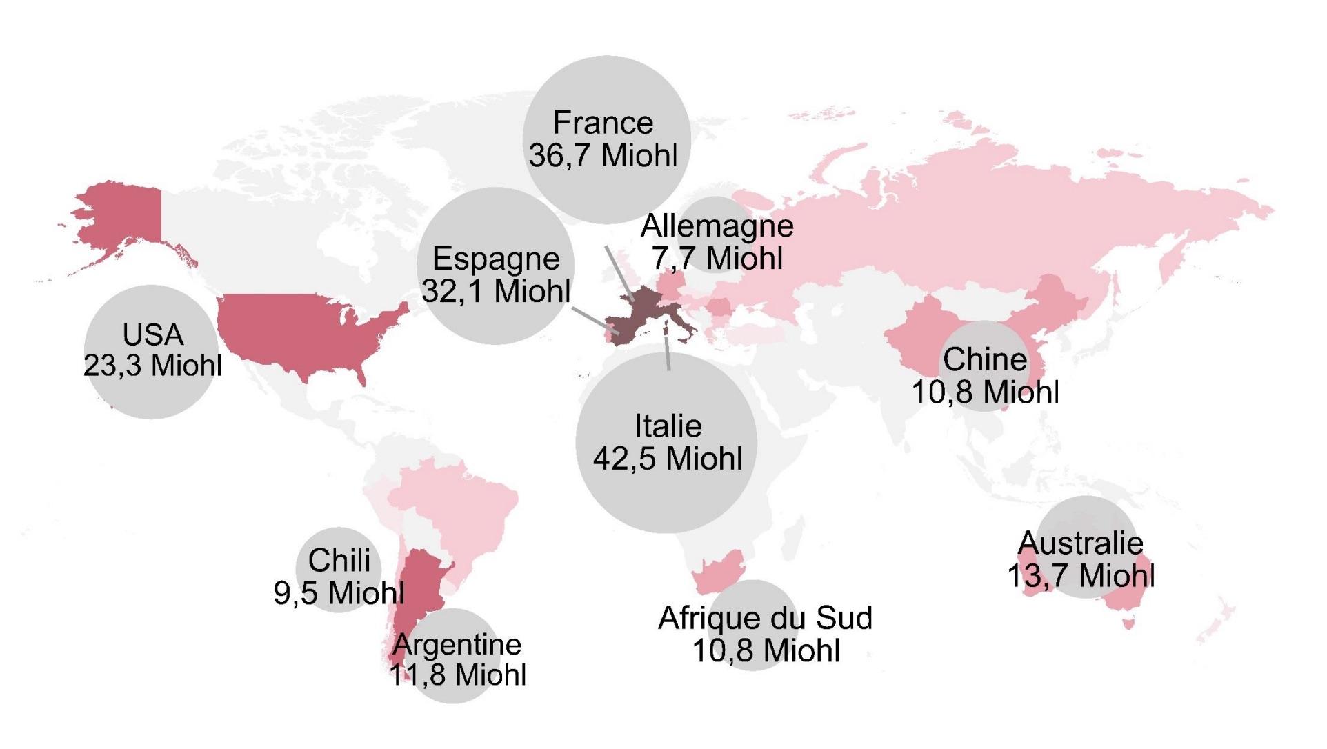 Крупнейшие виноградники какие самы большие в мире обзор